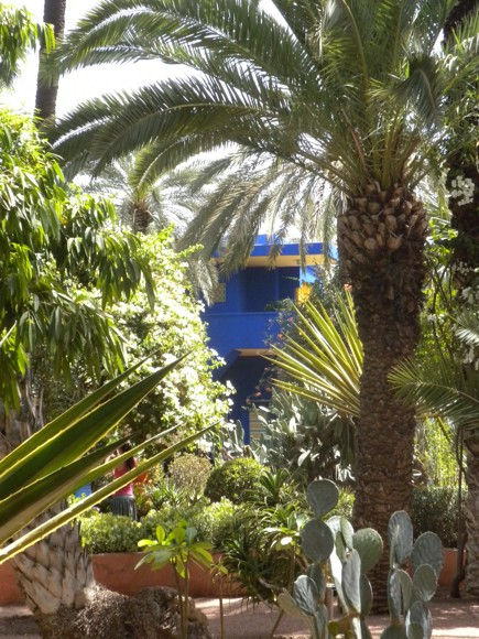 Cobalt Blue Buildings Peek Through Tropical Foliage