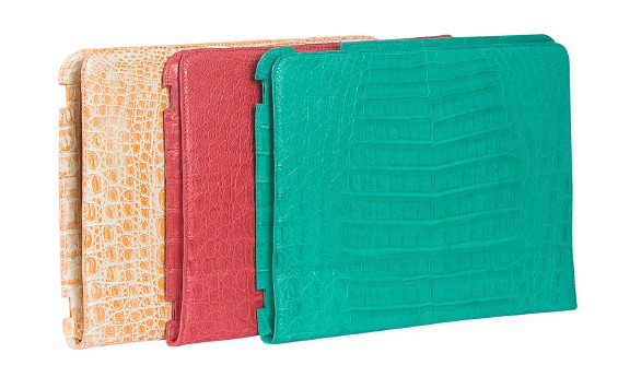 nancy gonzalez ipad cases