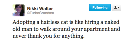 funny tweets, funniest tweets, funny jokes, adopting hairless cat is like hiring a naked old man to walk around your apartment and never thank you for anything