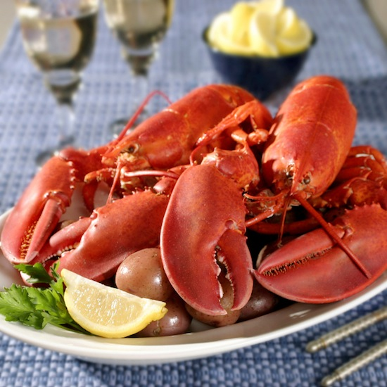seafood guide, lobster