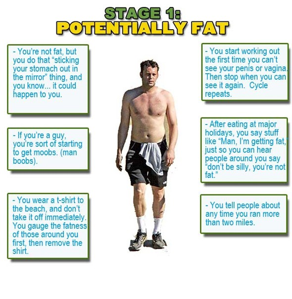 stages of fat, am I fat?, 
