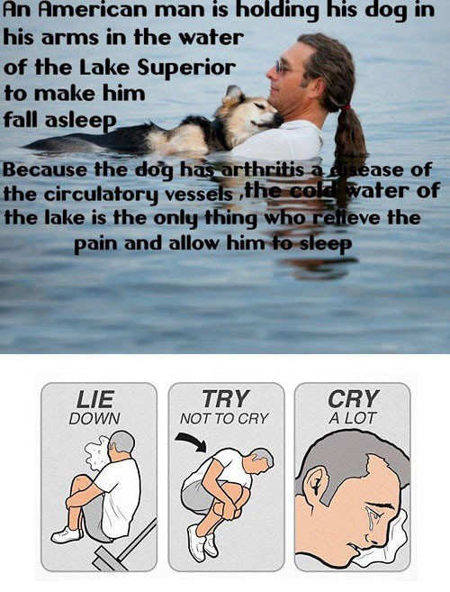 Lie Down. Try Not To Cry. Cry A Lot. An Emotional Meme ...