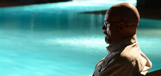 walt sitting by pool, breaking bad rabid dog