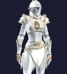 Paladin armor set everquest 2 forums this can be purchased at the station market place under the eq2 button i believe its called the iron forge parade armor or something like that publicscrutiny Gallery