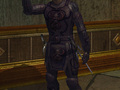 EverQuest II Costume