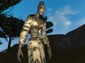 More EverQuest