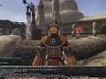 Final Fantasy XI Volunteer Work