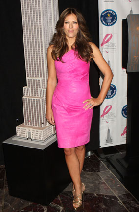 liz hurley breast cancer awareness