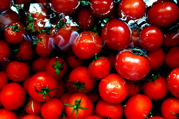 Antioxidants in tomatoes may help keep bones healthy