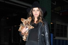 Miranda Kerr swaps bag for dog in New York