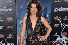 Cobie Smulders, err, smoulders in this gorgeous Donna Karan gown