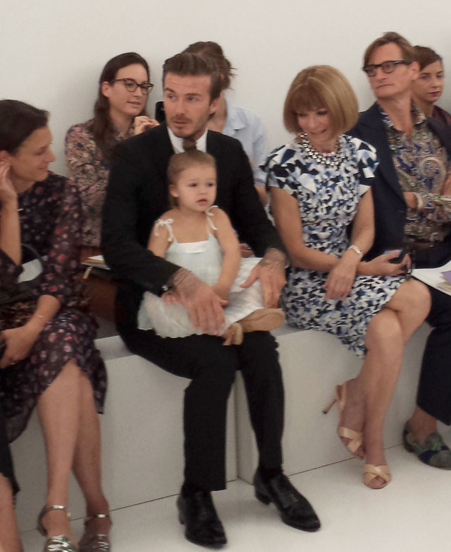 harper beckham's cutest photos