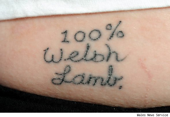 welsh tattoos. 100% Welsh lamb tattoo