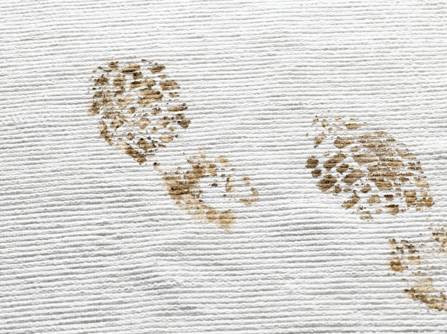 Muddy footprints on the carpet