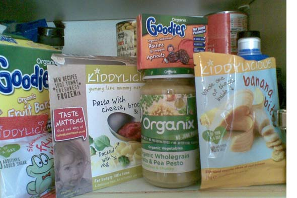 Baby food diet: Or why I've gone Gaga for Cheryl's purees