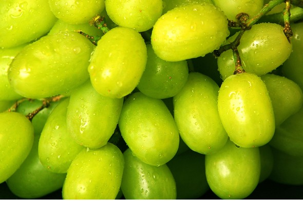 Four-year-old boy dies after choking on grape