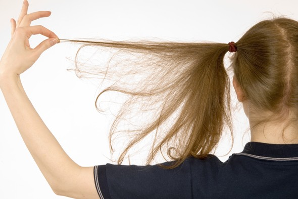 Treating headlice - nits costing parents millions in time and money