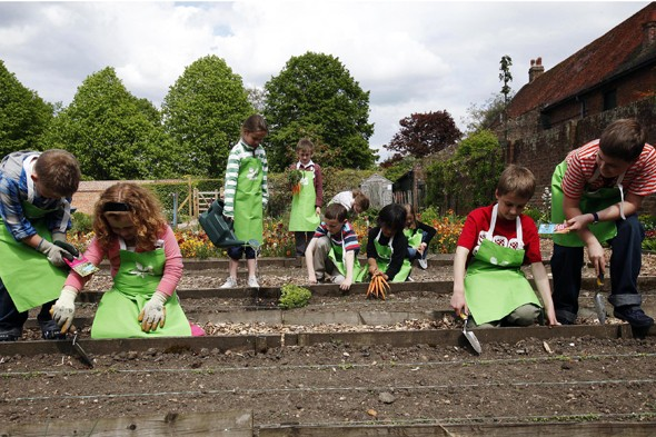 Children learning how to garden