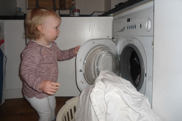 Toddler does the laundry