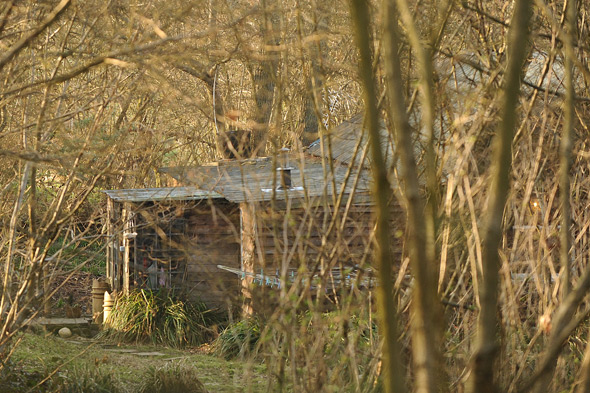 Family's secret house in Surrey woods angers neighbours