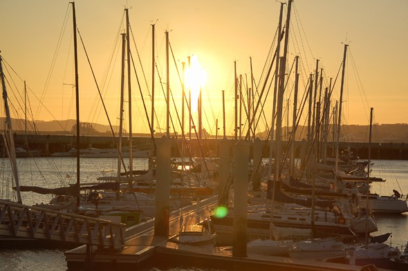 The pleasure marina at sunset