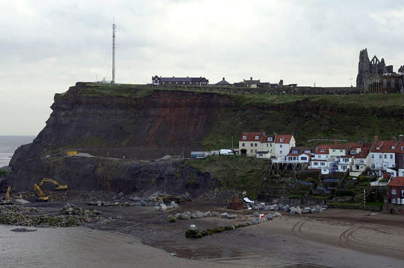 Mum and toddler escape from cliff fall after tot tumbles off and mum dives over to save him!