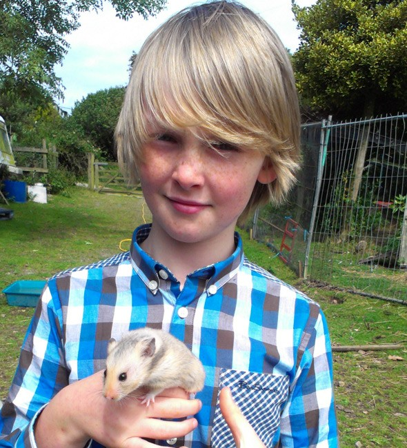 10-year-old entrepreneur launches UK's first hamster hotel