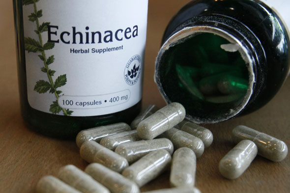 Experts warn of echinacea risk to under 12s