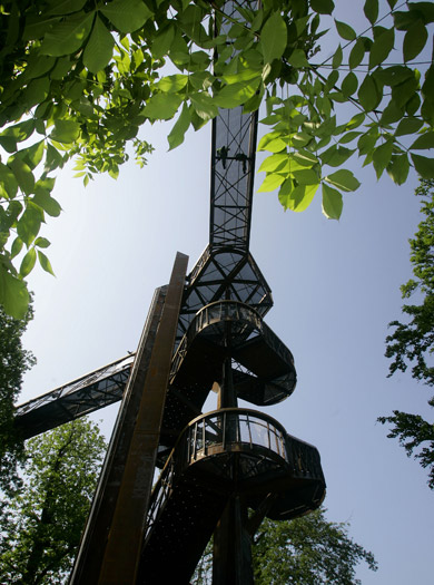 Have a go at Kew's Treetop Walkway