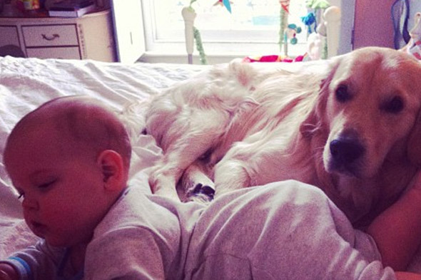 Peaches Geldof Tweets adorable pics of baby Astala and dog Parpy