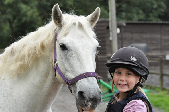 Stables Open Morning