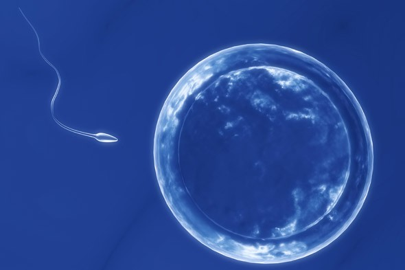 Paralysed man to become dad to twins after revolutionary sperm extraction