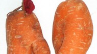 Blush! Rude carrots found in veggie bag