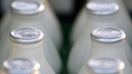 Boy dies from 'allergic reaction to milk'