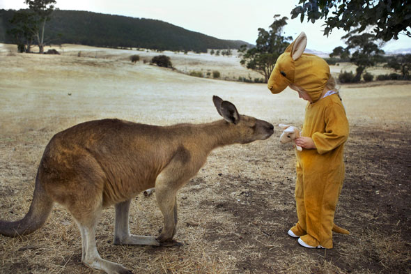 Nice to meet Roo! Marsupial fooled by kid's kangaroo onesie