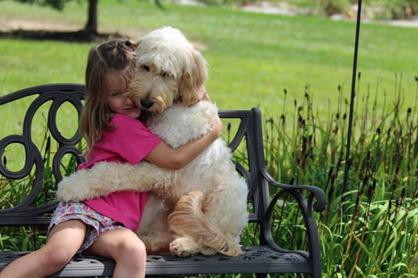 Meet the dog that sniffs out peanuts for allergic little girl