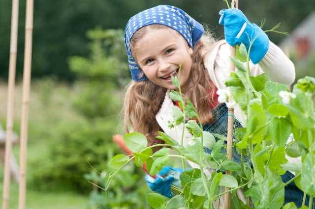 Tips to get the kids involved in the garden