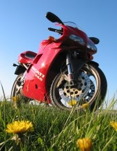 A red Ducati motorcycle parked in a field.
