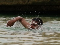 A man swimming, using the crawl (freestyle) stroke.