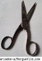A pair of old scissors