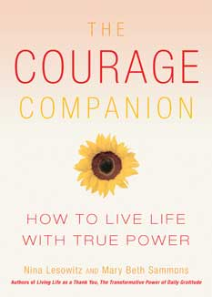 the courage companion book picture