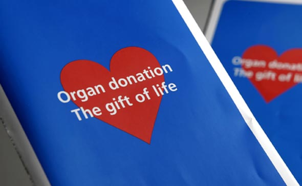 altuistic organ donation More than 116,000 people are listed for an organ transplant nationwide many  face a lengthy wait for an  the transplant candidate's need altruistic donation.