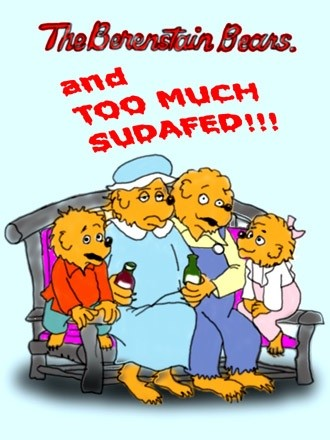 The Berenstain Bears and Too Much Sudafed