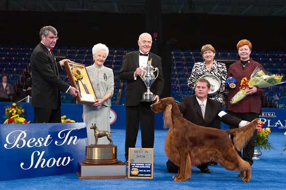 clooney national dog show winner picture