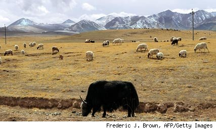 Inner Mongolia, autonomous areas of China