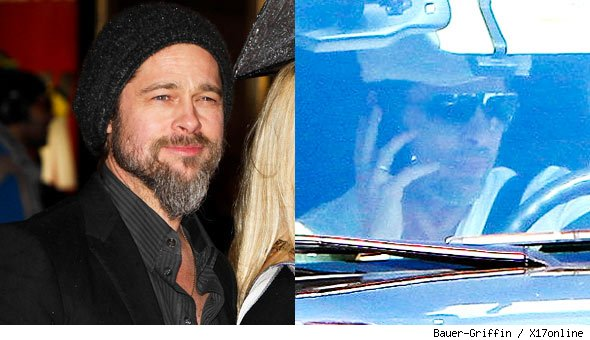 Brad Pitt Beard