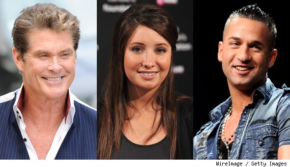 Bristol Palin, David Hasselhoff, The Situation Join 'Dancing With the Stars'