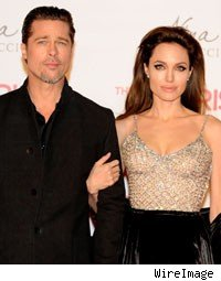 Angelina Jolie and Brad Pitt Give $2 Million to Namibian Wildlife Sanctuary