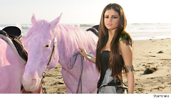 Pink Angered over Selena Gomez's Pastel Ponies