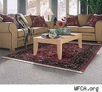 area rug, traditional area rug